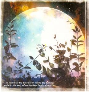 vine-moon